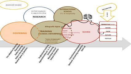Figure 1: Cometa as a model of integrated welfare
